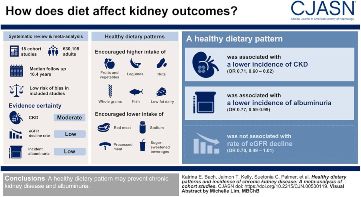 An info graphic table showing how diet can affect kidney health